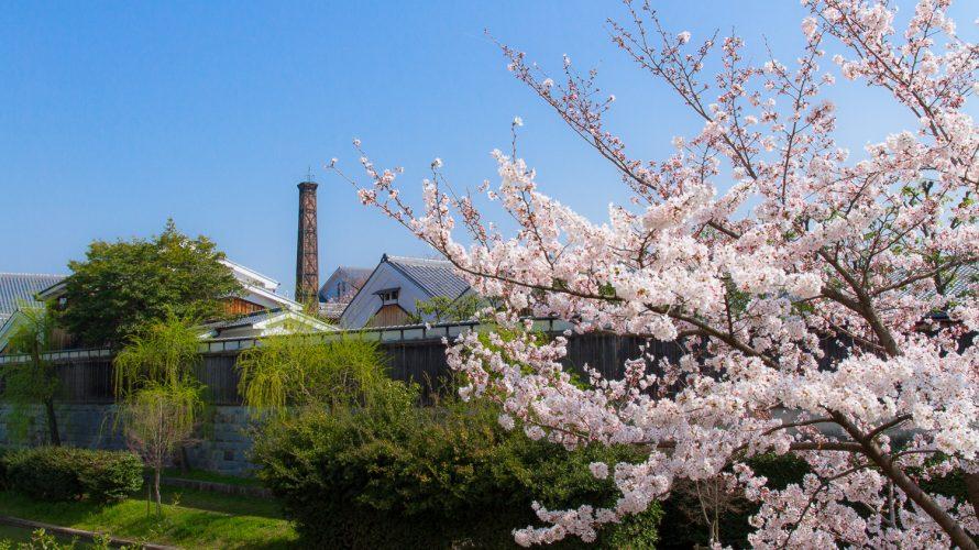 記念館と桜